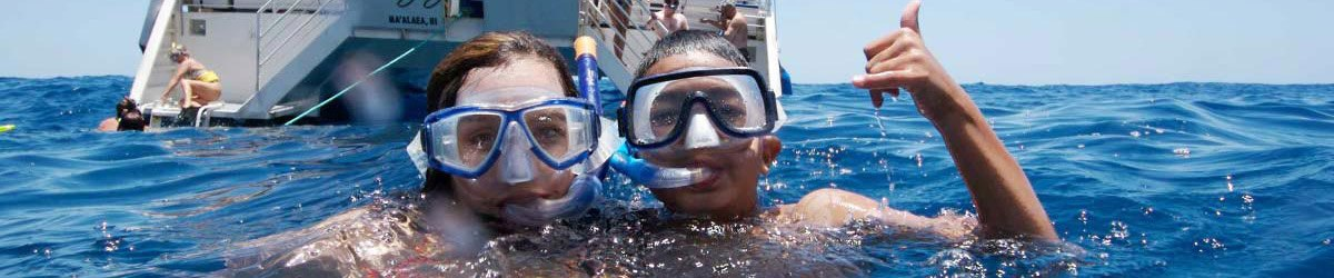 Hawaii Snorkeling Tours