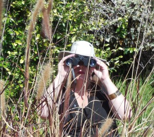 Carol on Safari Brush