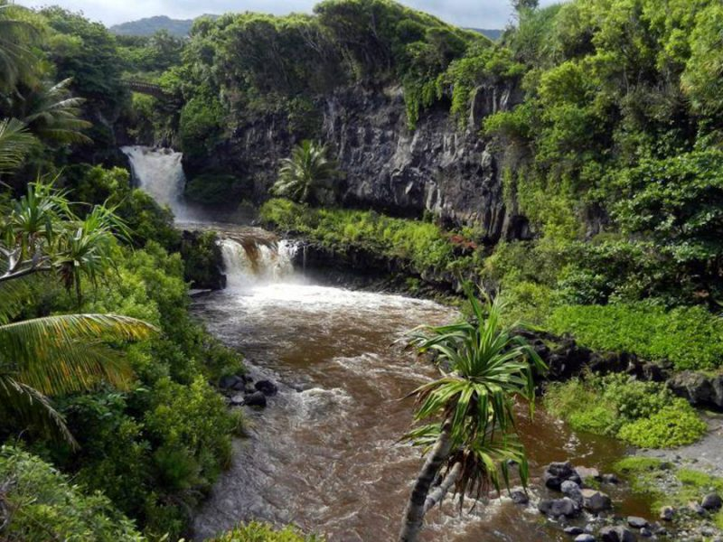Your Guide to Maui Hikes & Trails