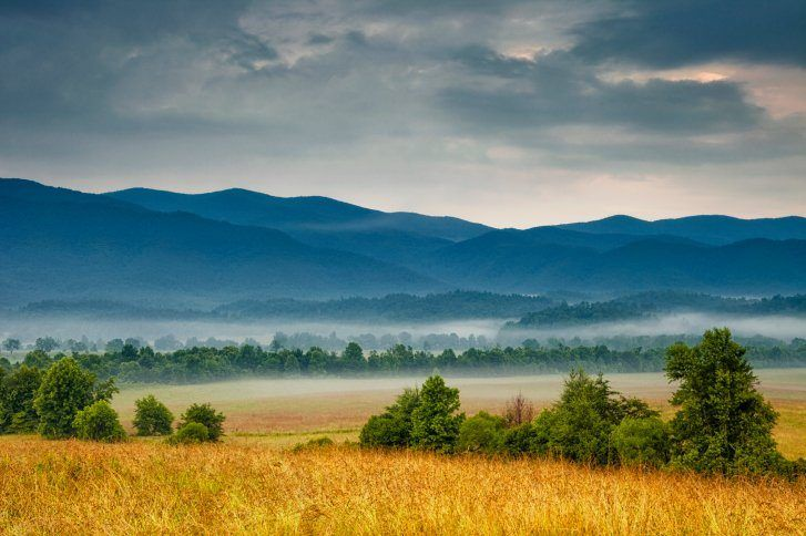 ground view of field with fog and mist in valley with The Great Smoky Mountains in the background in Gatlinburg, Tennessee, USA