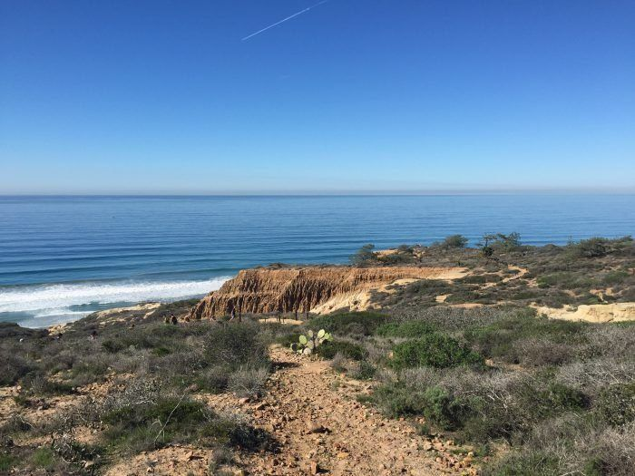 view of beach from Torrey Pines State Reserve in San Diego, California, USA