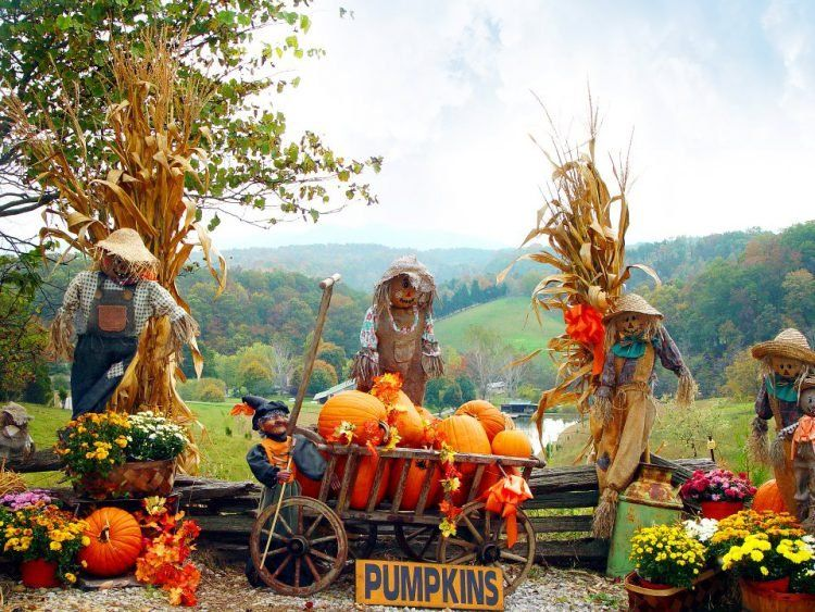 close up of pumpkins scarecrows and fall decor at Fall Fest in Gatlinburg, Tennessee, USA