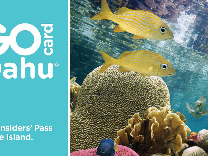 Why the Go Oahu Card is Your Exclusive Pass to Hawaii