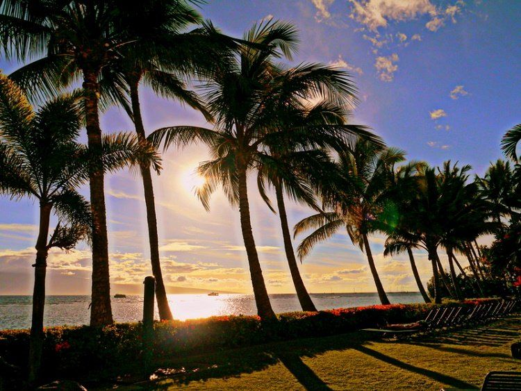 Things to Do in Lahaina You'll Totally Love
