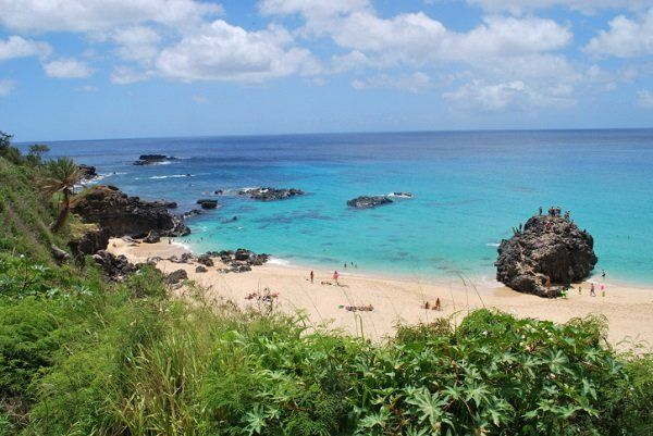 North Shore Oahu Activities to Add to Your Vacation