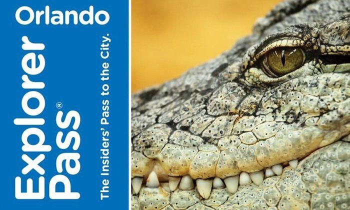 Pay less, Play More with the Orlando Explorer Pass