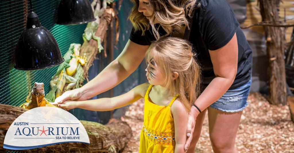 Top attractions in Austin include the Austin Aquarium