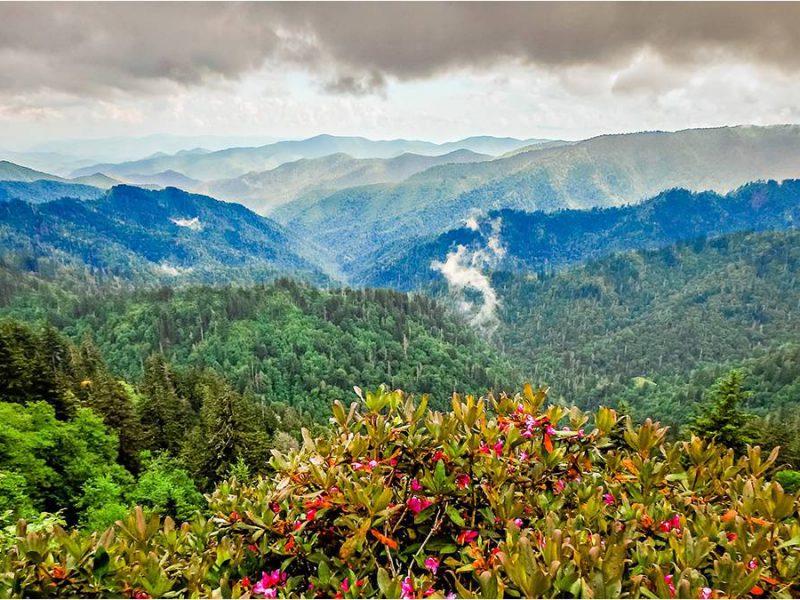Gatlinburg Hiking Guide: Charlies Bunion Trail
