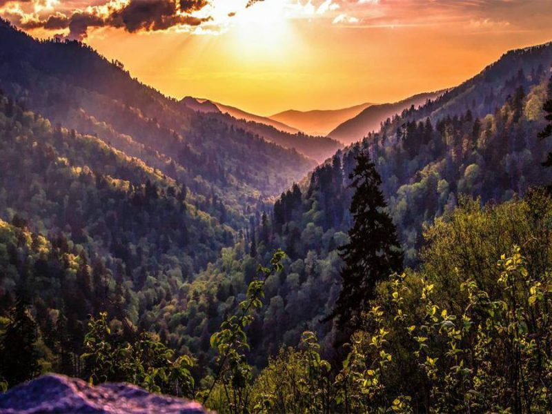 Great Smoky Mountains National Park Guide: What to Know Before You Go