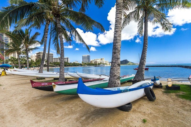The Best Beaches on Oahu: A Local's Guide