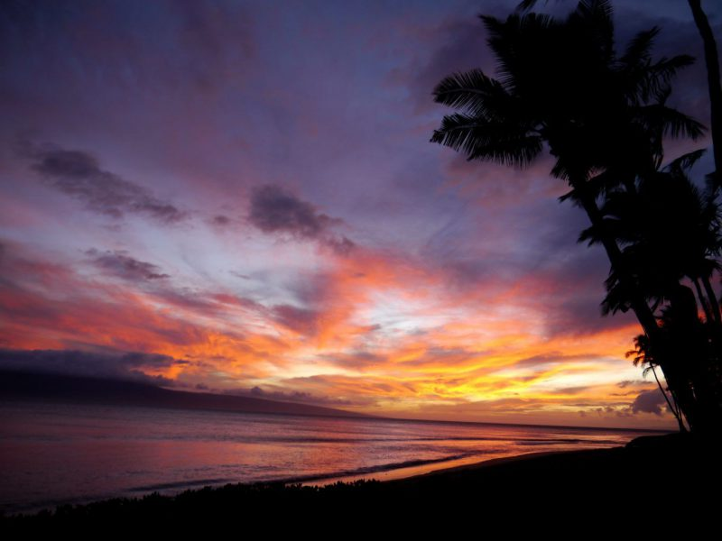 Maui After Dark: All the Best Things to Do in Maui at Night