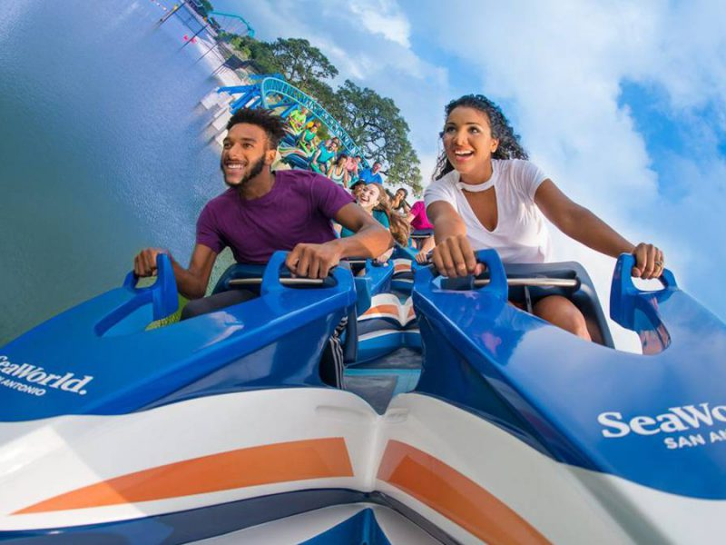 14 SeaWorld San Antonio Tips Every Visitor Should Know