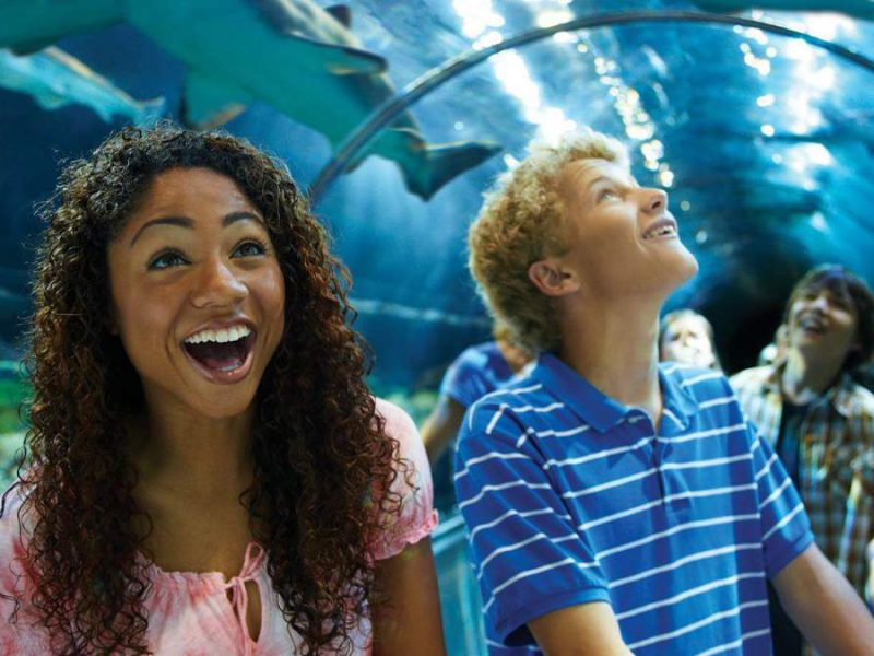 9 Entertaining Things to Do in San Diego with Teenagers