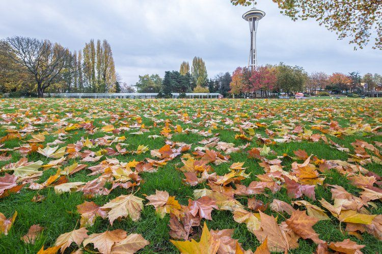 3 Days in Seattle This Fall