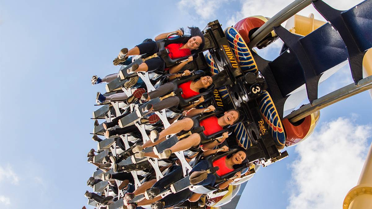 aerial view of guests riding Montu roller coaster at Busch Gardens Tampa, Florida, USA